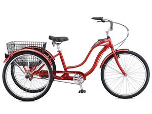 Rower Schwinn Town And Country red 2020